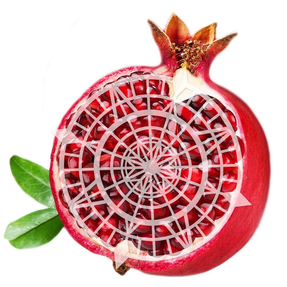 Pomegranate_Object
