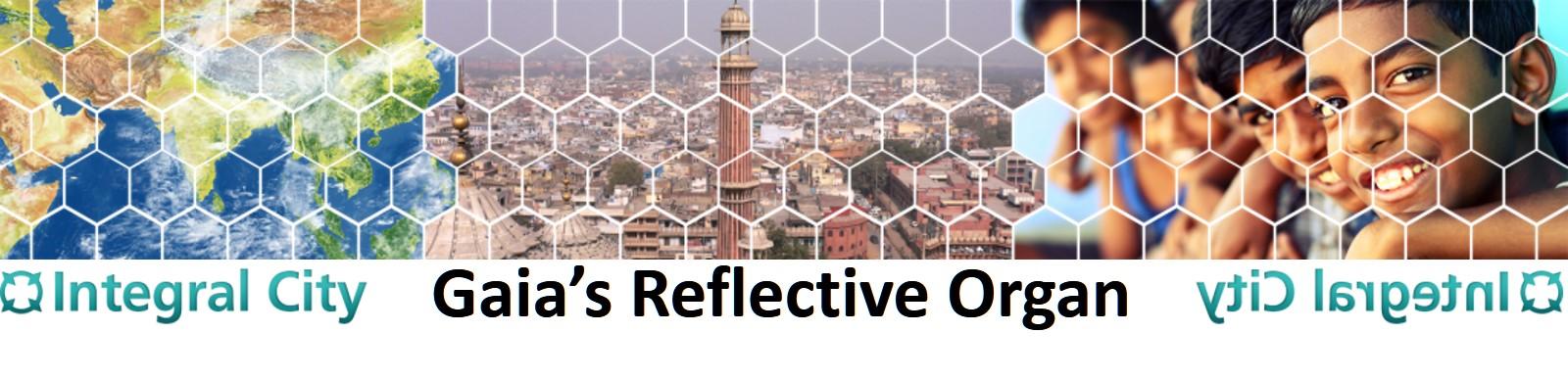 Banner Gaias Reflective Organ jpg