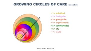 Integral City Circles of Care